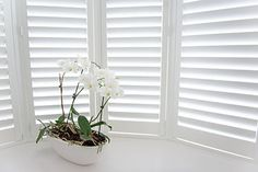 Bay window Pvc Windows, Blinds For Windows, Window Blinds, Indoor Shutters, House Shutters, Blinds Online, Shutter Blinds, Modern Blinds, Sofa Upholstery