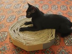 Strip and roll a thick box. Source: http://www.rootsimple.com/2012/06/homemade-cat-toys/