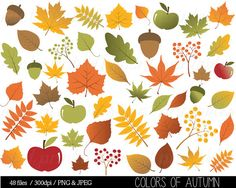 Autumn Leaf Clipart Fall Leaves Clip Art by mintprintables on Etsy