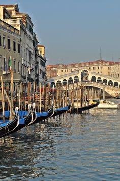 Venice Places To Travel, Places To Visit, Overseas Travel, Vatican City, Grand Canal Venice, Travel And Leisure, Italy Architecture, Central Europe, Bella Italia