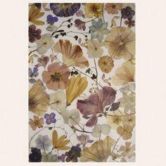 Herbarium http://vanialozanova.blogspot.com/