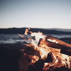 the distinct and perfect smell of campfire smoke permeates everything in its path– and yet no one seems to mind.