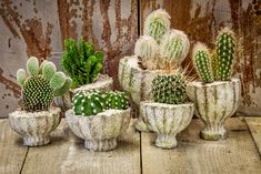 Can't touch this! #OthmarDecorations #Flowerpots #CactusClub