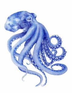 Blue Octopus Watercolor Painting Archival Art Print Hamptons Style Decor Beach Art