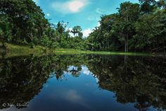 Iquitos - Perú