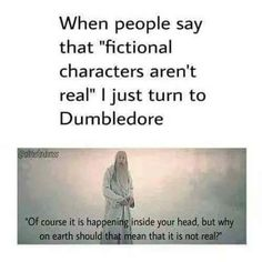 Dumbledore is always right. Fictional characters are real. They might night be what you can consider real to you, but to me, they are as real as anything else on this God forsaken earth. Harry Potter Quotes, Harry Potter Love, Harry Potter Fandom, Harry Potter World, Dumbledore Quotes, Ridiculous Harry Potter, Might Night, In Der Disco, Scorpius And Rose