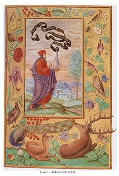 """In the words of the art historian Jörg Völlnagel, """"the Splendor Solis is by no means a laboratory manual, a kind of recipe book for alchemists. Rather, Splendor Solis sets forth the philosophy of alchemy, a world view according to which the human being (the alchemist) exists and acts in harmony with nature, respecting divine creation and at the same time intervening in the process underlying that creation, all the while supporting its growth with the help of alchemy"""""""