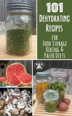 101  Dehydrating Recipes for Food Storage, Hiking and Paleo Diets - build up your food storage for emergency preparedness with these great recipes.
