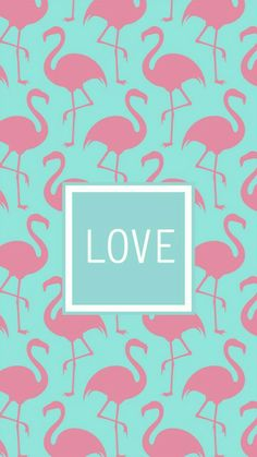 Blue and pink flamingo AOII Iphone background! Summer Wallpaper, Love Wallpaper, Pattern Wallpaper, Wallpaper Notebook, Flamingo Birthday, New Years Eve Party, Phone Backgrounds, Cute Wallpapers, Iphone Wallpapers