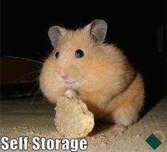 Self Storage :)