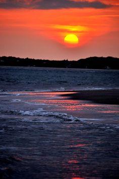 ✮ Orangecicle on the Ocean
