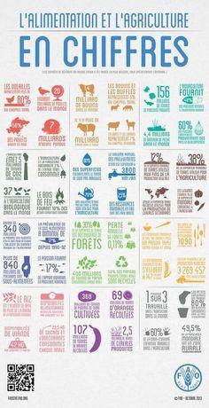 l'alimentation et l'agricultre en chiffres