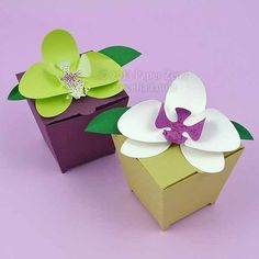 3D Paper Orchid Cards and Gift Box, ideal for a wedding, anniversary, birthday, thank you gifts (SVG DXF PDF files for machine die cutting)