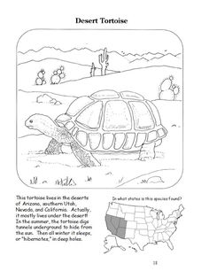 FREE 28 Page Coloring Book Filled With Interesting Facts And Maps That Helps Bring Home