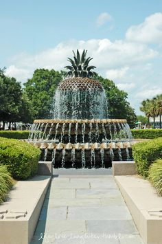 charleston...my husband and I had one of  our first pictures taken together in front of this fountain! Oh to be young again!