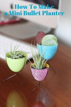 Desktop Decor DIY: How To Make a Mini Bullet Planter — Apartment Therapy Tutorials | Apartment Therapy