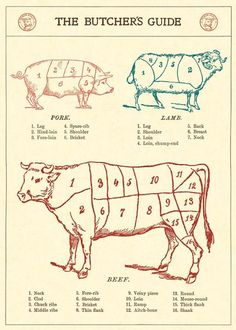 This Butchers Guide Beef Cuts Wrapping Paper wraps all your gifts in vintage style. Decorative ephemera for holidays, birthdays, scrapbooks, crafts, and more. Butcher Shop, Spare Ribs, Paper Source, Kitchen Art, Kitchen Ideas, Papers Co, Bookbinding, Paper Decorations, Vintage Walls