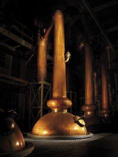 Scotch Still.  -- www.spiritedgifts.com #happysipping Whisky Single Malt, Irish Whiskey, Scotch Whiskey, Glenmorangie Distillery, Whisky Festival, Liquor List, Pot Still, Fun Drinks, Alcoholic Drinks