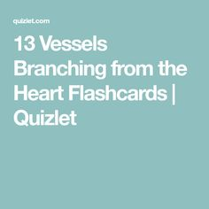13 vessels of the legs flashcards quizlet med cardiac 13 vessels of the legs flashcards quizlet med cardiac circulatory function pinterest ccuart Choice Image