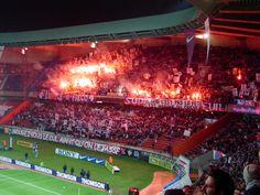 PSG-OL 2002/2003 Prince, Football Fans, Psg, Terrace, Culture, Soccer Players, Balcony, Patio, Decks