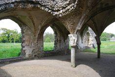 Waverley Abbey (Farnham, England): Top Tips Before You Go - TripAdvisor