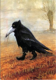 Krähe, by Rudi Hurzlmeier, German surrealist. The crow appears to wear a cape with a very high collar, and fashionable high-button shoes, and chews a piece of straw while lost in thought on his stroll through the field. Crow Art, Raven Art, Bird Art, The Crow, Crow Or Raven, Arte Sketchbook, Crows Ravens, Poster Prints, Art Prints