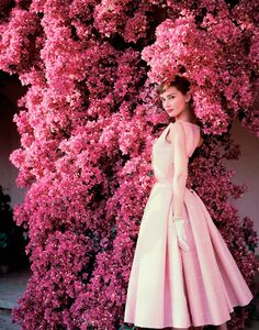 """Audrey Hepburn photographed by Norman Parkinson at """"La Vigna"""", American Vogue, August 1955 Dress: Givenchy (in a shade of light pink with some white stripes, especially for an afternoon cocktail, of..."""
