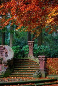 Fall in ye σlde tσwn σf Victσria