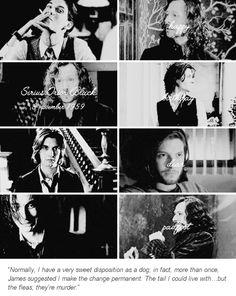 Happy birthday Sirius Black!!! Nov.3rd