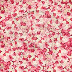 Bed of Roses - Oz Backdrops and Props