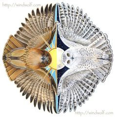 Spirits of Day and Night Flight - Snowy Owl and Red tail Hawk: