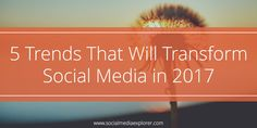 Social media has been evolving rapidly and won't slow down in Check out these 5 predicted trends. Social Media Updates, Social Media Trends, Social Media Site, Social Media Analytics, Social Networks, Social Media Marketing, Brand Marketing Strategy, Content Marketing, Innovation Strategy