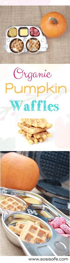 Toddler meal, organic pumpkin waffles the whole family can enjoy. Peanut free, no dairy, with organic real ingredients.