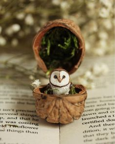 Miniature owl in a walnut shell by Woods of Wonder - # owl . - Creative Ideas DIY - Miniature Owl in a Walnut Shell by Woods of Wonder – - Owl Crafts, Clay Crafts, Diy And Crafts, Arts And Crafts, Walnut Shell Crafts, Deco Nature, Miniature Crafts, Miniature Dolls, Handmade Decorations