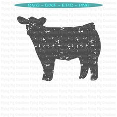 Show Cows, Show Horses, Show Steers, Show Cattle, Beef Cattle, Flying Pig, Monogram Decal, Cricut Creations, Vinyl Projects