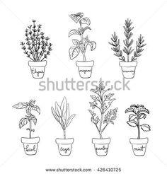 Hand Drawn Houseplants Pot Set Plant Stock Illustration 361829990 ...