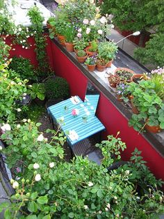 Rooftop Terrace As Small Vegetable Garden If the weather allows you can grow lots of things on a roo Rooftop Terrace Design, Balcony Design, Terrace Garden, Balcony Gardening, Rooftop Gardens, Pergola Shade, Diy Pergola, Pergola Kits, Low Maintenance Garden Design