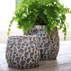 Grey Crater Plant Pot We absolutely love this unusual plant pot cover. Designed to look like small craters, in a variety of different sizes, this stylish plant pot is great for holding a variety of house plants. Ceramic Plant Pots, Ceramic Flower Pots, Pottery Pots, Ceramic Pottery, Pot Jardin, Hand Built Pottery, Concrete Crafts, Ceramics Projects, Potted Plants