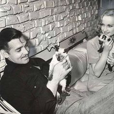 Cats and Celebrities  - Clark Gable & Carole Lombard with their Siamese