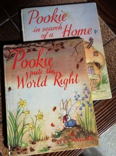I was in love with Pookie and had to have (some of) the stories read to me every night. I was four when I was given these books – I was already a bookworm and all the family knew I would be happy with any present that was a book. As soon as I was earning pocket money, each week half was set aside to buy books. It took several weeks to save enough for one but in spite of competing budgetary requirements, books always won. - Jill, Vic