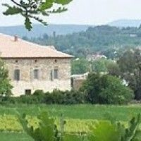 The Romantic Vineyard - Date Ideas and Marriage Advice