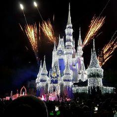 Walt Disney world 2015 Disney Fireworks, Walt Disney World Vacations, The Good Place, Cathedral, Castle, Building, Travel, Amazing Places, Viajes