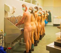 Estudantes de veterinária posam nus para calendário em prol da formatura