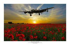 """Field of the Fallen"" by Mark Donoghue - Lancaster bomber RAF RAAF RCAF RNZAF WWII WW2 Aviation art artist artwork digital art military aircraft warbird"