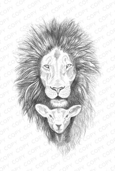 Lion and Lamb Sketch, I would add flowers around the two