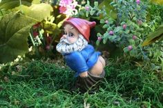 dirty buns Yard Gnomes, Funny Garden Gnomes, Gnome Garden, Funny Gnomes, Garden Art, Concrete Garden, Gnome House, Funny Rude, Fairy Land