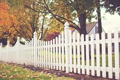 The How-To Experts: Picket Fences At Wilway Lumber we are your How-To Experts for all things home improvement! Our How To page is a comprehensive library of our building and installation expertise with tips and solutions on topics such as glass installations plumbing fencing roofing outdoor decks and much more!  Todays feature is Fencing. What are the steps to successfully install a picket fence around your home? Heres a super quick breakdown of what youll need to learn.     Determine…