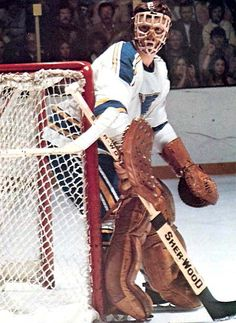 Wayne Stephenson, St. Louis Blues