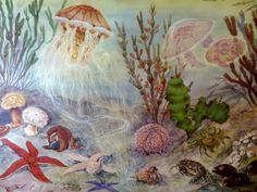 Vintage Marine Biology Pull Down Chart by Discoverprints on Etsy (great quilt idea!)