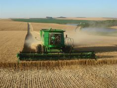 Intensive large-scale food production on the best soils